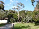 Rosebud / Tom Salt Park, Point Nepean Road east of Adams Avenue / View through park