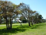 Seaspray / Seaspray Memorial Park and surroundings between Buckley Street and Bearup Street / View north-east through park, Buckley St north of Buchan St