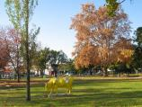 Shepparton / Queens Gardens, Nixon Street / View through gardens towards Wyndham St