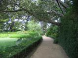South Yarra / Como House, Williams Road / Path through gardens