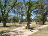St Kilda / Albert Park along Fitzroy Street / Parkland between Junction oval and Fitzroy St