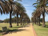 St Kilda / Catani Gardens, Beaconsfield Parade / View south-east along path towards rotunda