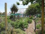 St Kilda / Veg Out Community Gardens, Shakespeare Grove / Gardens near entrance