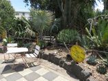 St Kilda / Veg Out Community Gardens, Shakespeare Grove / Plant garden