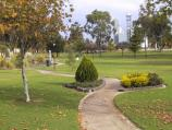 Swan Hill / Murray River and Riverside Park / View in park