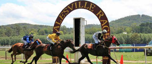 Healesville Amateur Racing Club