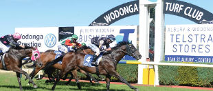 Wodonga & District Turf Club