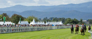 Yarra Valley Racing