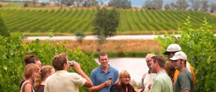 Australian Wine Tour Co.