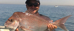 Queenscliff Fishing Charters & Scenic Tours