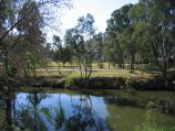 Wangaratta / Ovens River and Apex Park / View east across Ovens River from River Walk, corner Faithfull St and Parfitt Rd