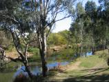 Wangaratta / Ovens River and Apex Park / View north along Ovens River and through Apex Park from Parfitt Rd