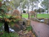 Wangaratta / Merriwa Park / Bridge across lake into fernery