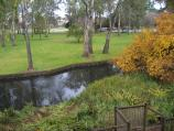Wangaratta / Merriwa Park / View across lake from fernery