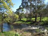 Warburton / Yarra River Walk / View west along river, west of Story Reserve