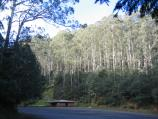Warburton / Road from Cement Creek to Mount Donna Buang summit / 'Ten Mile' - shelter and car park