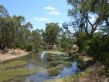 Warracknabeal / Lions Flora and Fauna Park, Yarriambiack Creek / View north along creek from footbridge into Lions Park