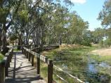 Warracknabeal / Boardwalk along Yarriambiack Creek, Craig Avenue east of Coral Avenue / View east along boardwalk and creek
