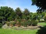 Warragul / Queen Street Park, Queen Street / View through park