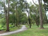 Warragul / Rotary Park, corner Princes Way and Latrobe Street / Walking track north through park