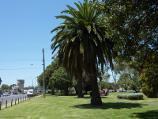 Werribee / Kelly Park, Cherry Street and Synnot Street / South-easterly view through park fronting Cherry St