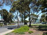 Werribee / Kelly Park, Cherry Street and Synnot Street / South-westerly view through park along Synnot St
