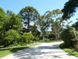 Werribee / Werribee Park and The Mansion, Werribee South / Pathway from Gatelodge to The Mansion