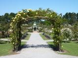 Werribee / Victoria State Rose Garden at Werribee Park, Werribee South / Archway of roses and rotunda
