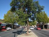 Wodonga / High Street north of railway line and surrounding streets / View south along High St between South St and railway crossing