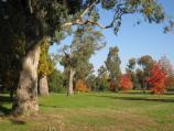 Wodonga / Les Stone Park, corner Lawrence Street and Parkland Drive / Lawns
