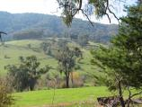 Yackandandah / Beechworth Road, north-west of Yackandandah / View north-east, 3 kilometres from Yackandandah