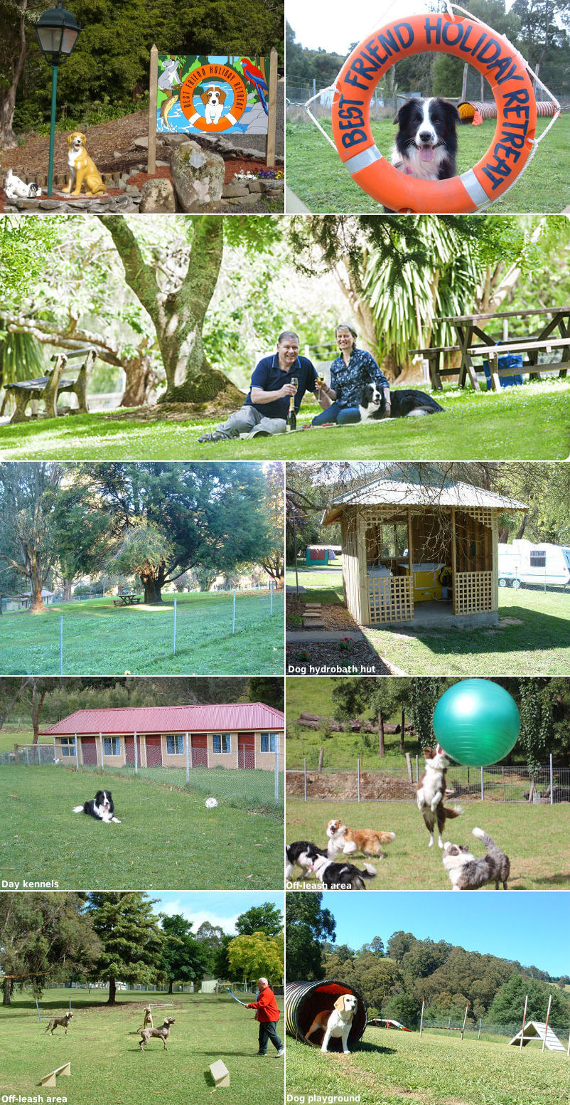 Best Friend Holiday Retreat - Fenced sites and facilities