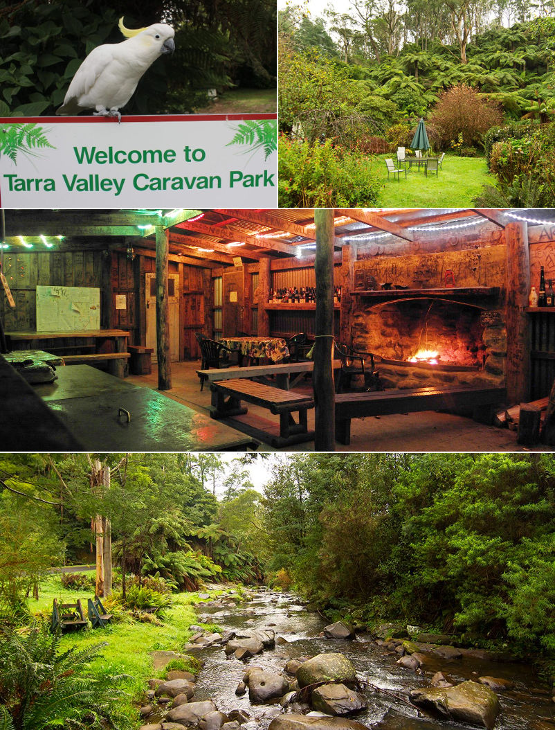 Tarra Valley Tourist Park 'Fernholme' - Grounds and facilities