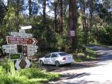 Yarram / Tarra - Bulga National Park / Moorfields Saddle, junction of Tarra Valley Rd and Grand Ridge Rd