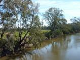 Yea / Goulburn River at Ghin Ghin Road / View west along river from bridge