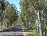 Yea / Ghin Ghin Road north of Goulburn River / View north along Ghin Ghin Rd, 3.5 km from Goulburn River